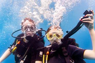teaser-familien-Tauchsafari-divingFox